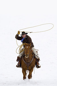 Horses & Icons of the Wild West in Winter