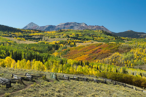 Colorado's fall colors