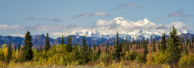Denali National Park in full autumn color