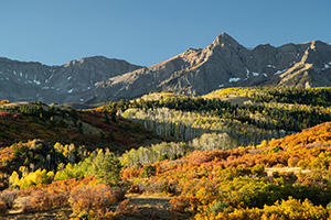 Brilliant fall colors in Colorado mountains