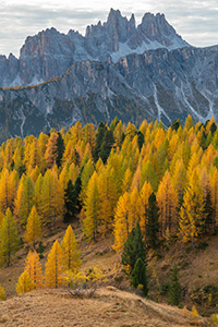 Fall colors in Italy's Dolomites