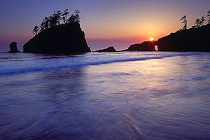Sea stacks along the Washington coast