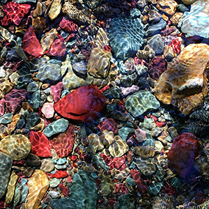 Colorful rocks underwater
