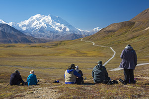 Photographing in Denali National Park Alaska