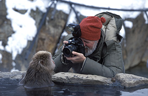 Getting up close with a snow monkey